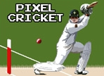 Play Pixel Cricket